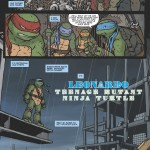 TeenageMutantNinjaTurtles_Leonardo-Preview_03