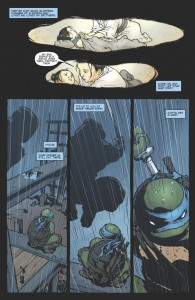 TeenageMutantNinjaTurtles_Leonardo-Preview_05