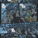 TeenageMutantNinjaTurtles_Leonardo-Preview_08
